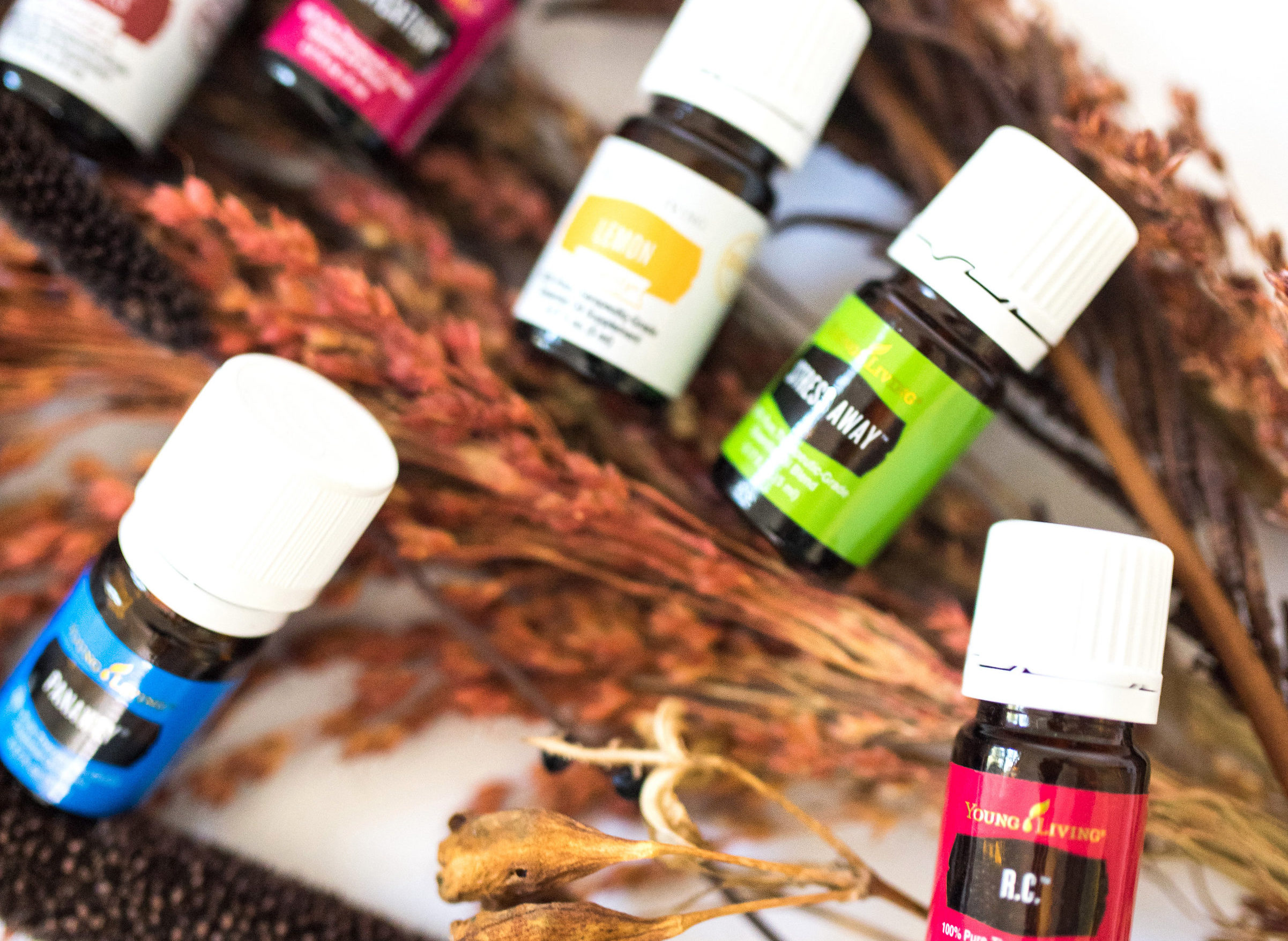 Read more about the article Why Young Living