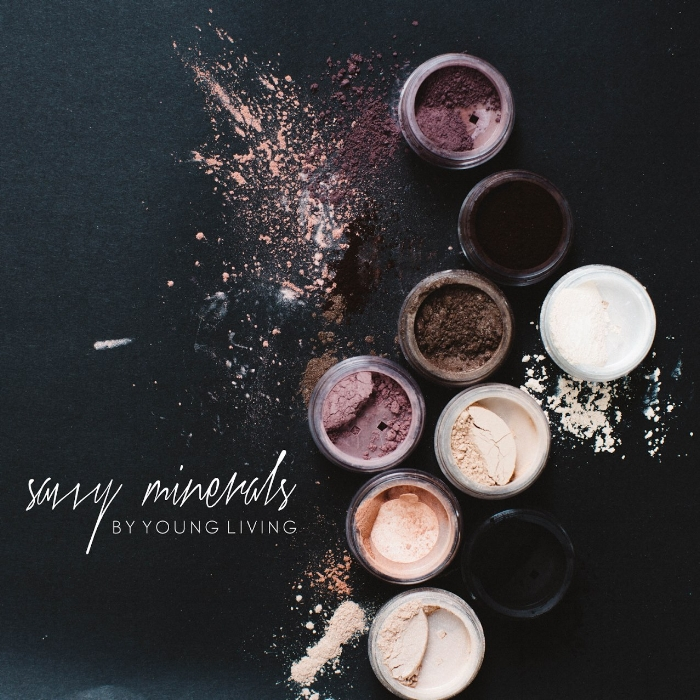 About Savvy Minerals Makeup